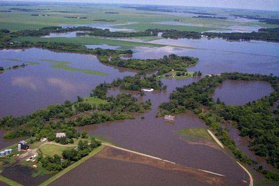 Common_Flooding_in_Lower_Wild_Rice_River_Area.jpg